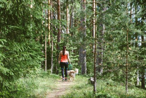 Nainen-ja-koira-lenkilla
