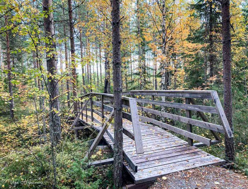 Himmaanmaen-luontopolku-silta